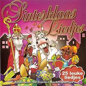 Amazon.com: Sinterklaas Liedjes: De Gouden Nachtegaaltjes