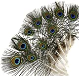 Kayso Peacock Mini Tails Feathers, 25 Piece