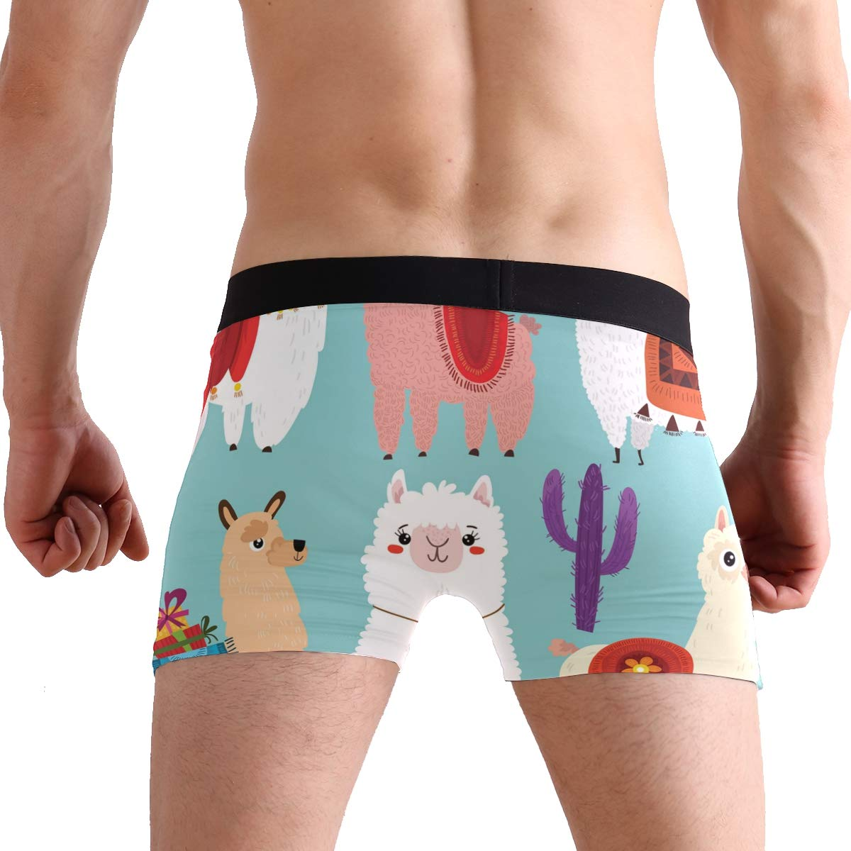 SUABO Mens 2-Pack Boxer Briefs Polyester Underwear Trunk Underwear with Colorful Alpaca Design