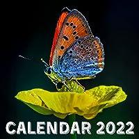 Calendar 2022: Butterflies September 2021 - December 2022 Monthly Planner Mini Calendar With Inspirational Quotes