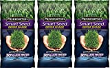 Pennington Smart UlDqiC Seed Dense Shade Premium Grass Seed, 7 Pound (Pack of 3)