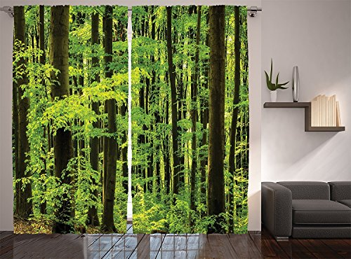 """Ambesonne Mountain Curtains, Spring Foliage Beech Forest Fresh Morning View in The Mountains Image, Living Room Bedroom Window Drapes 2 Panel Set, 108"""" X 90"""", Dark Green"""