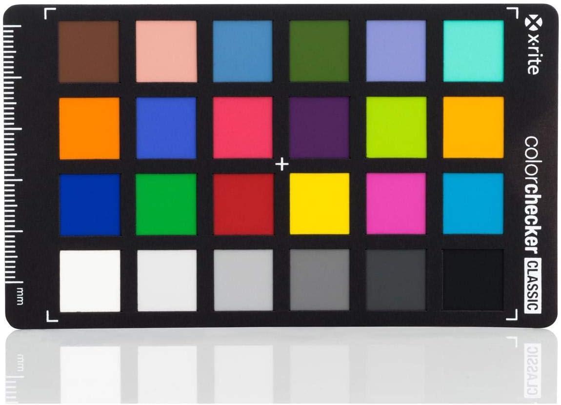 X-Rite ColorChecker Classic Mini with Protective Sleeve