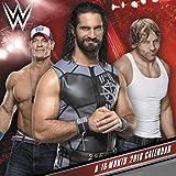 2018 WWE Mini Calendar (Day Dream)
