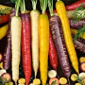 Organic Rainbow Blend Carrot Seed Mix - Non-GMO, Heirloom Vegetable Garden Seeds: Atomic Red, Cosmic Purple, White, Yellow