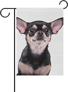 Hokkien Cute Chihuahua Garden Flag Banner 12 x 18 Inch Decorative Garden Flag for Outdoor Lawn and Garden Home Décor Double-Sided