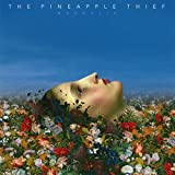 The Pineapple Thief: Magnolia (Audio CD)