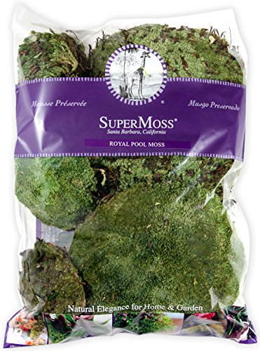 Supermoss 21886) Royal Pool Moss Preserved, Fresh Green, ...
