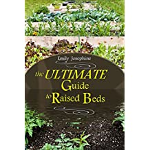 The Ultimate Guide To Raised Beds