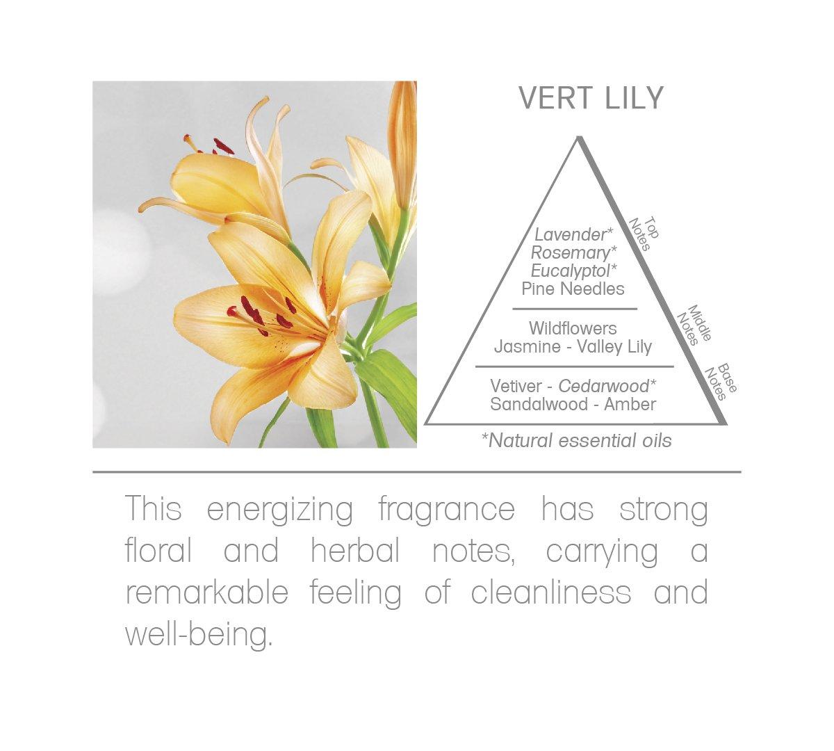 Acqua Aroma Vert Lily Room Fragrance Spray 6.8 FL OZ (200ml) by Acqua Aroma (Image #4)