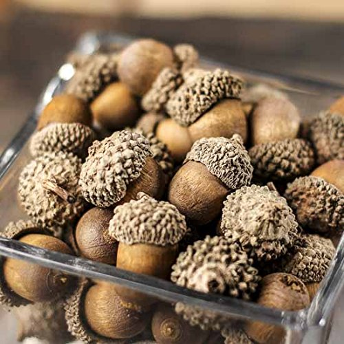 Factory Direct Craft Package of About 48 Realistic Look Acorns for Fall, Autumn and Thanksgiving Table Scatters, Basket Fillers and Crafts