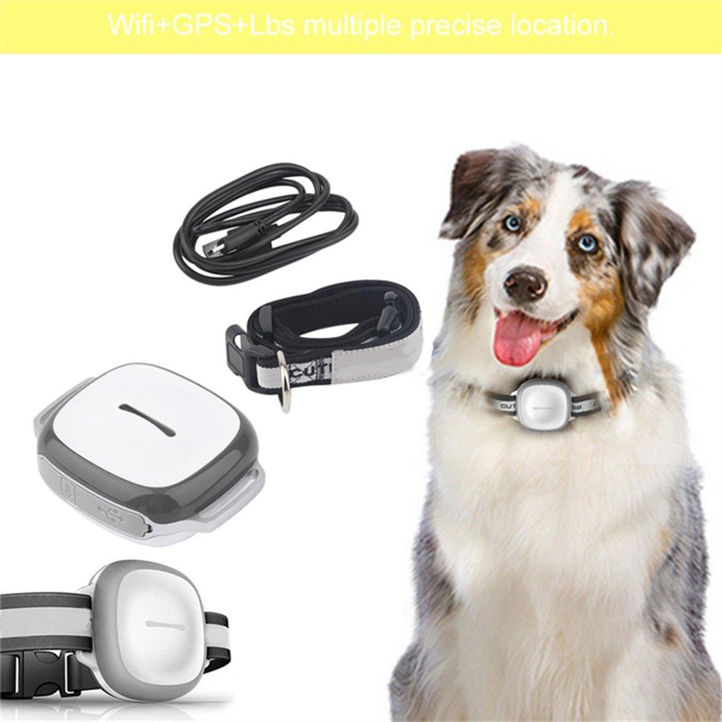 Elenxs GT011 Wireless GPS para Perros y Gatos - Resistente al Agua para Mascotas de fijación de Collar buscador: Amazon.es: Hogar