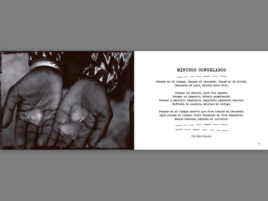 Carrete velado: poesía y fotografía: IRENE G PUNTO: 9788403501836: Amazon.com: Books