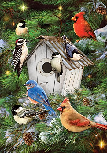 Custom Decor Winter Bird House - Garden Size, Decorative Double Sided, Trademarked, Licensed and Copyrighted Flag - Printed in the USA by Inc. - 12 Inch X 18 Inch approx. size