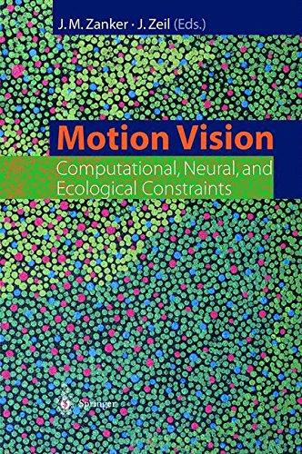 Motion Vision pdf