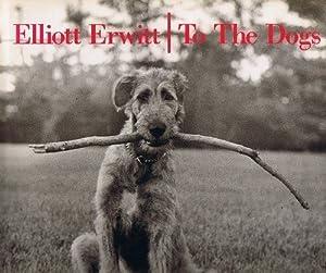Elliott Erwitt Famous Photographs Dogs