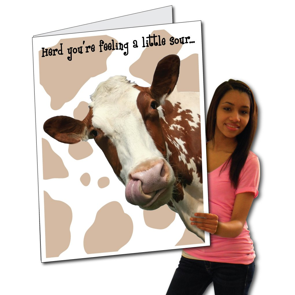 VictoryStore Jumbo Greeting Cards:  Giant Get Well Card (Cow),  2' x 3' Card with Envelope