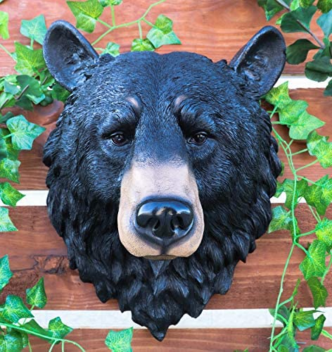 Ebros Gift Large Olympic Black Bear Head Wall Decor Plaque 16 Tall Taxidermy Art Decor Sculpture The Grandfather Bear Wall Bust Plaque Home Kitchen Amazon Com