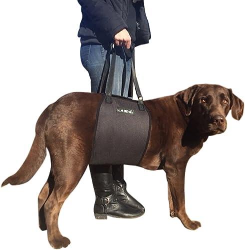 Labra-Veterinarian-Approved-Dog-Canine-K9-Sling-Lift-Adjustable-Straps-Support-Harness