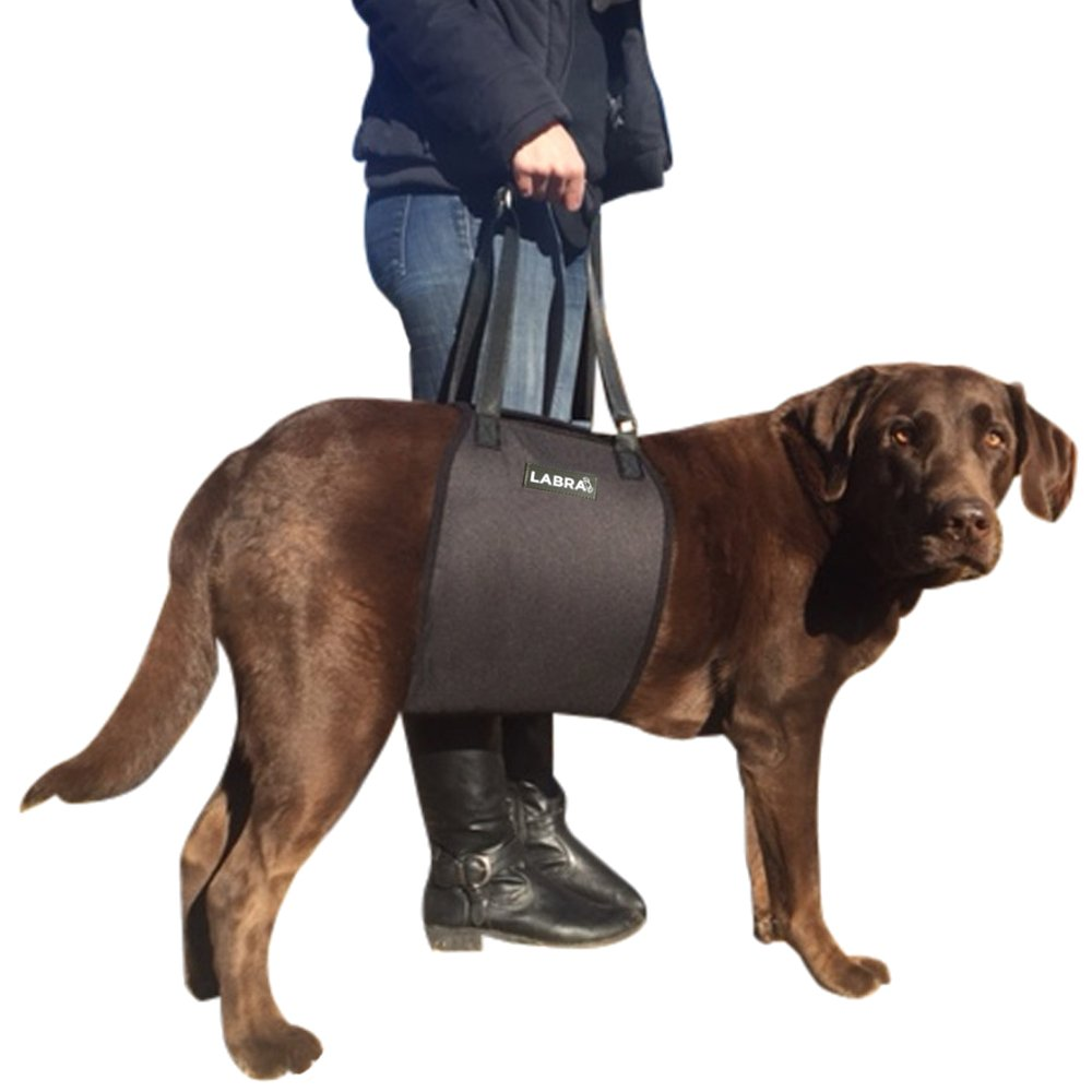 Black Large Black Large Labra Veterinarian Approved Dog Canine K9 Sling Lift Adjustable Straps Support Harness Helps with Loss of Stability Caused by Joint Injuries and Arthritis ACL Rehabilitation Rehab