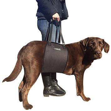 Amazon.com : La Veterinarian Approved Dog Canine K9 Sling Lift ...