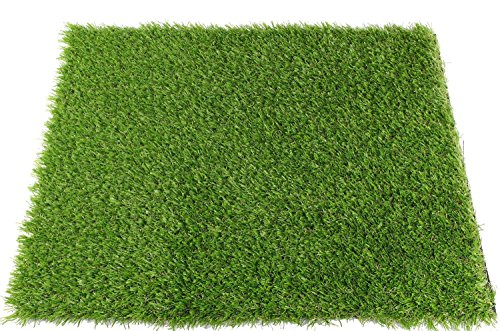 ALTRUISTIC Premium Realistic Artificial Grass in Many Sizes (6.5 ft X 10 ft = 65 square ft) by ALTRUISTIC (Image #1)