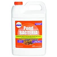 PondWorx Pond Bacteria - Formulated for Large Ponds, Water Features and Safe for...