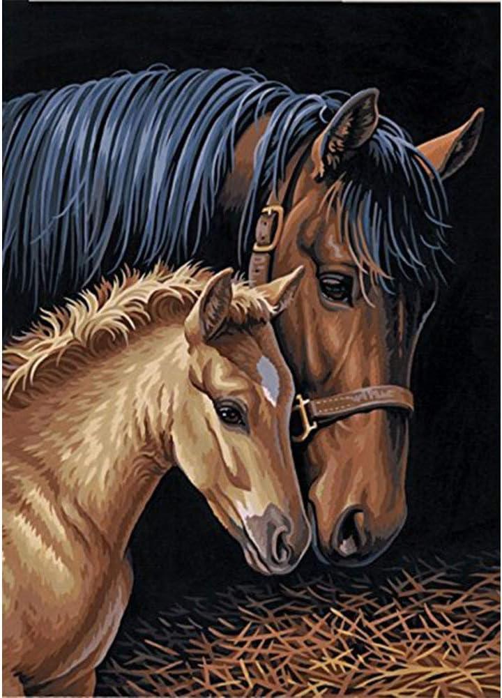 5D Diamond pintura de diamantes,Sunnay El caballo Animales Grandes Mariposas Cuadro por Principiantes Infantil Princesas Christmas,30 x 40 cm