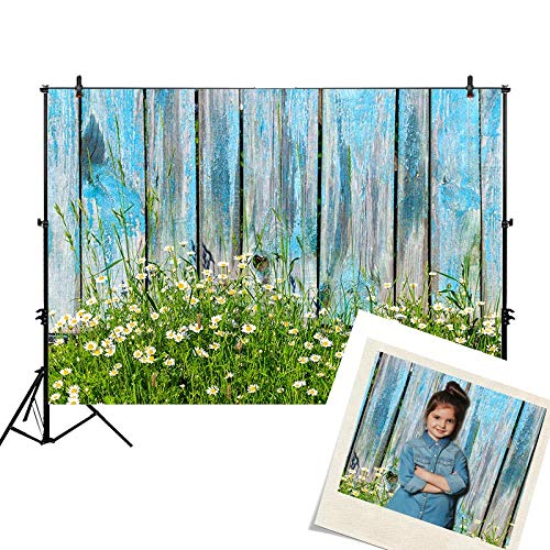 Funnytree 7x5ft Spring Blue Wood Photography Backdrops Grass Daisy Flower Wooden Board Plank Easter Background for Pictures Decorations Photo Studio Photobooth ()