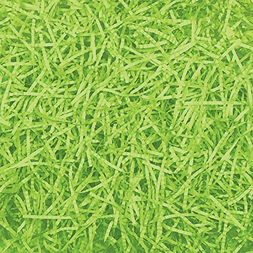 Egg-stra Special Easter Party Straw Grass Party Decoration, Kiwi green, Paper, 2 Ounces