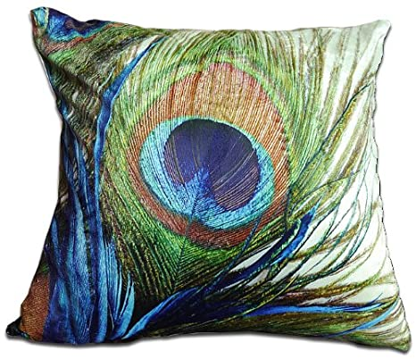 Amazon.com: Decorativos de doble cara cojín manta de pluma ...