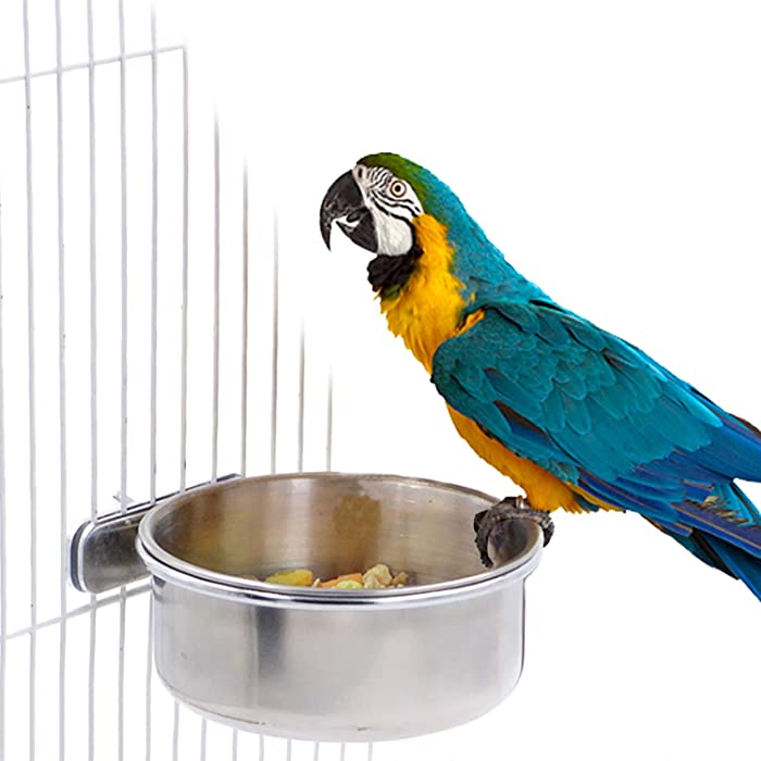 BWOGUE Bird Parrot Feeding Cups with Clamp Stainless Steel Food Water Bowls Dish Feeder for Cockatiel Conure Budgies Parakeet Parrot Macaw Small Animal Chinchilla