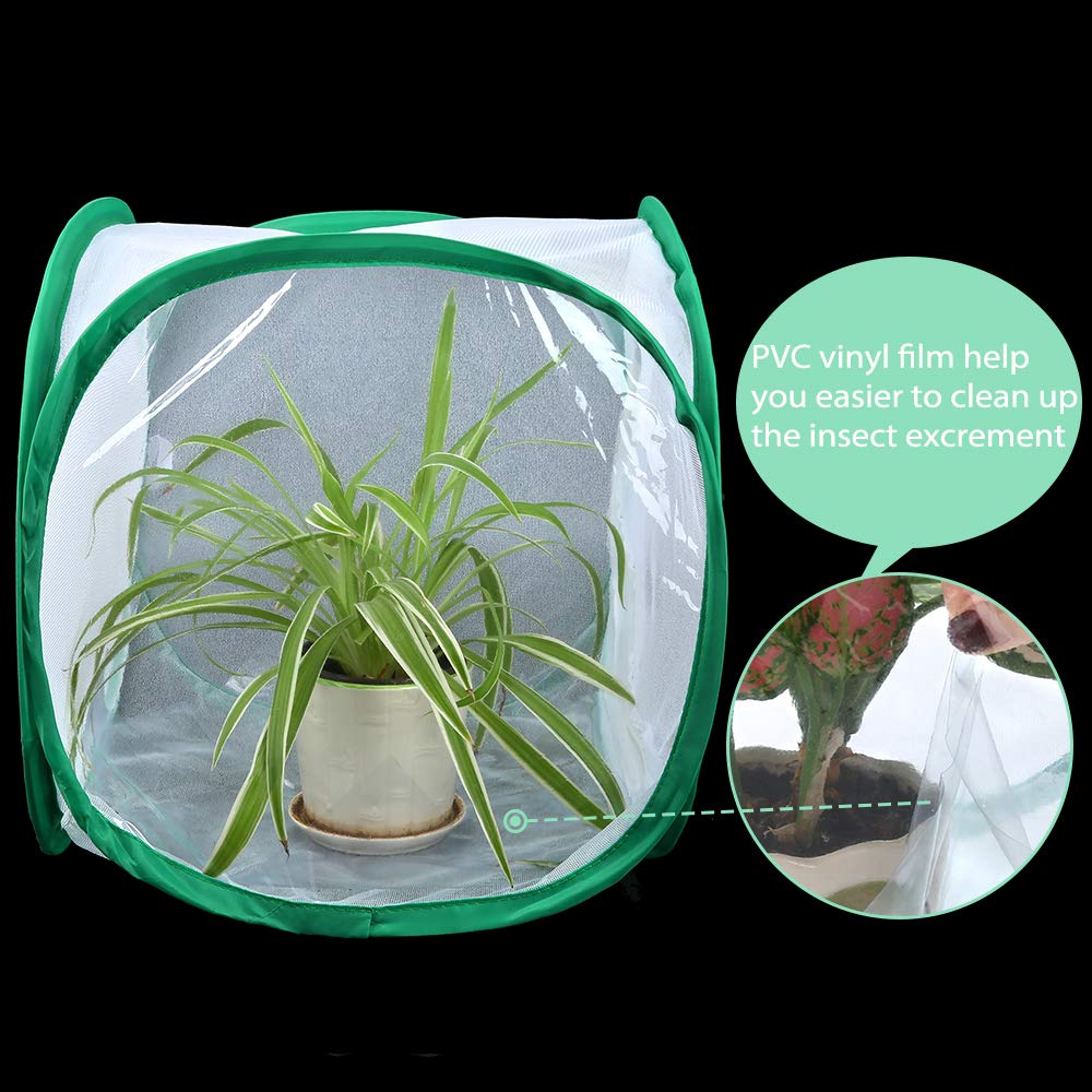 Collapsible Light-transmitting Terrarium/ Pop-up White Insect and Butterfly Net for Kids Raising Insects Outdoor Activities Pllieay 2 Pieces 12 Inch Tall Butterfly Habitat Cage with Clear PVC Film