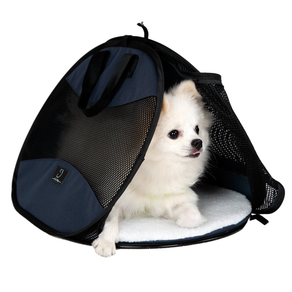 A4Pet Ultra Light, Sturdy and Collapsible Pet Carrier for Cats and Small Animals up to 20 lbs by A4Pet (Image #4)