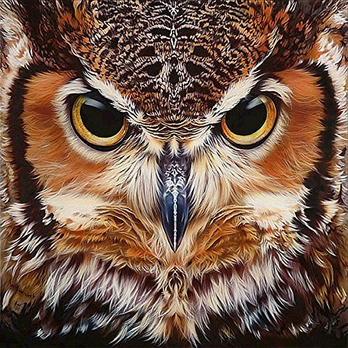 UPMALL DIY 5D Diamond Painting by Number Kits, Full Drill Crystal Rhinestone Embroidery Pictures Arts Craft for Home Wall Decoration OWL 15.75×11.81 inches