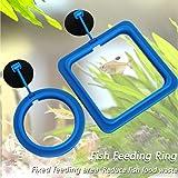Hatisan 4 Pcs Fish Feeding Ring Square and Round