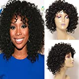 Best African American Wigs - Jolia Hair Fashion Gorgeous Hairstyles Synthetic Short Curly Review