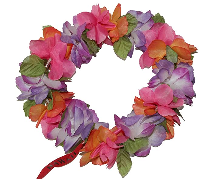 The Purple Orange Pink Hawaii Elastic Headband-haku lei at Amazon ... bedfb46a5db