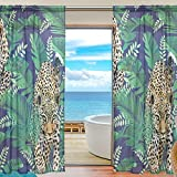 "SAVSV Window Sheer Curtains Panels Voile Drapes Morden Cheetah And Leopards Palm Leaves 55"" W x 78"" L 2 Panels Great For Living Room Bedroom Girl's Room"