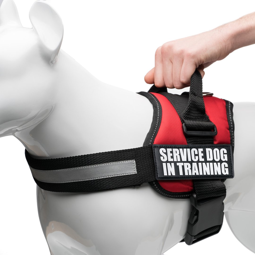 Service Dog Vest Harness with 2 Reflective Service Dog In Training Vest Patches, for Working Dogs sizes Small, Medium, Large, Swap Patches With Your Support Patch Preference, by Industrial Puppy