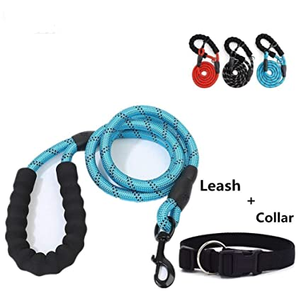 Vanshchan Dog Leash & Dog Collar Set, 5 FT Pet Leash with Comfortable Padded Handle (Color Black, Blue and Red) for Night Light Matching Black Dog ...