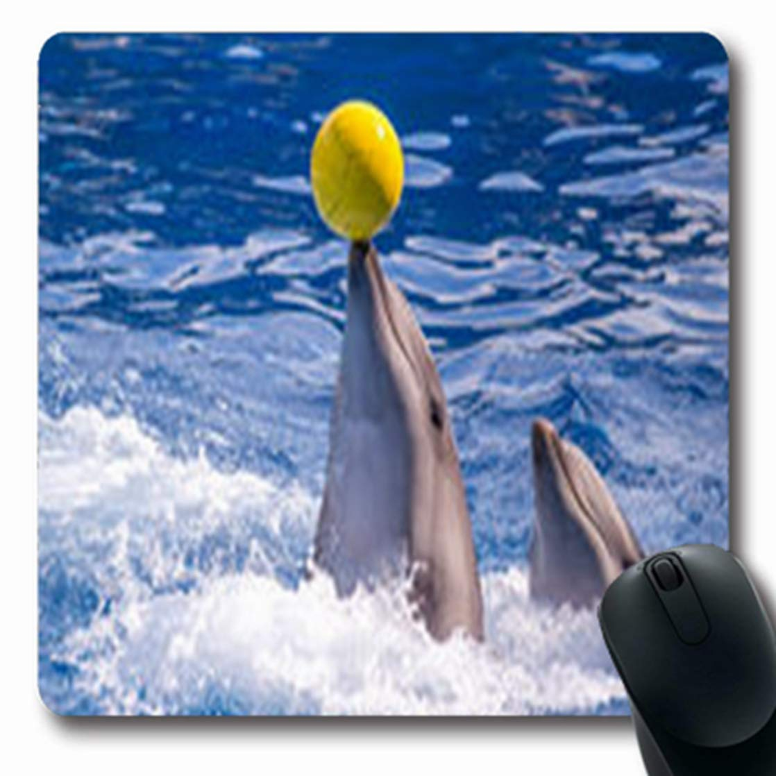 Amazon.com: Mousepads Whales Black Pilot Calderon Spain ...