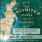 The Unlimited Sparks of a Bonfire, Chapter 3: An African Savannah: Healing Family Betrayal, Dominance, and Power Struggles | Molly McCord