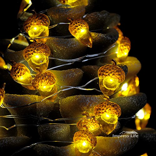 Impress Life Decorative Lights, Acorn Lights String 10 ft Copper Wire 40 LEDs New Battery-Powered for Ice Age, Camping, Wedding, Birthday Parties, Bedroom Decorations with Dimmable Remote & Timer by Impress Life (Image #3)