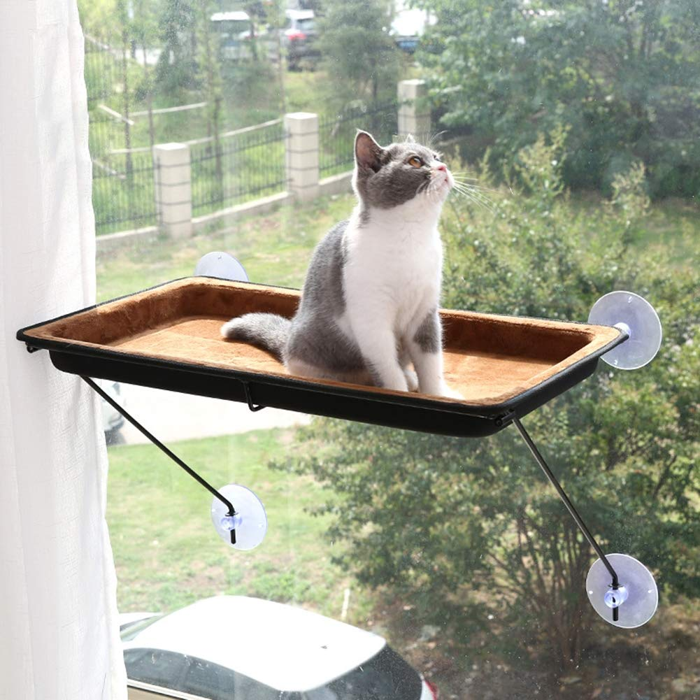 Amazon.com: Cat Bed Window Perch Hammock Sunny Seat Tree Kitty Sill Resting Pet Products Condo Hanging Shelf Suction Cups Mounted Soft Space Saving Durable ...