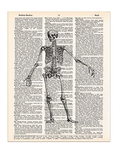 Vintage Skeleton, Medical Anatomy Drawing, Dictionary Page Art Print, 8x11 UNFRAMED
