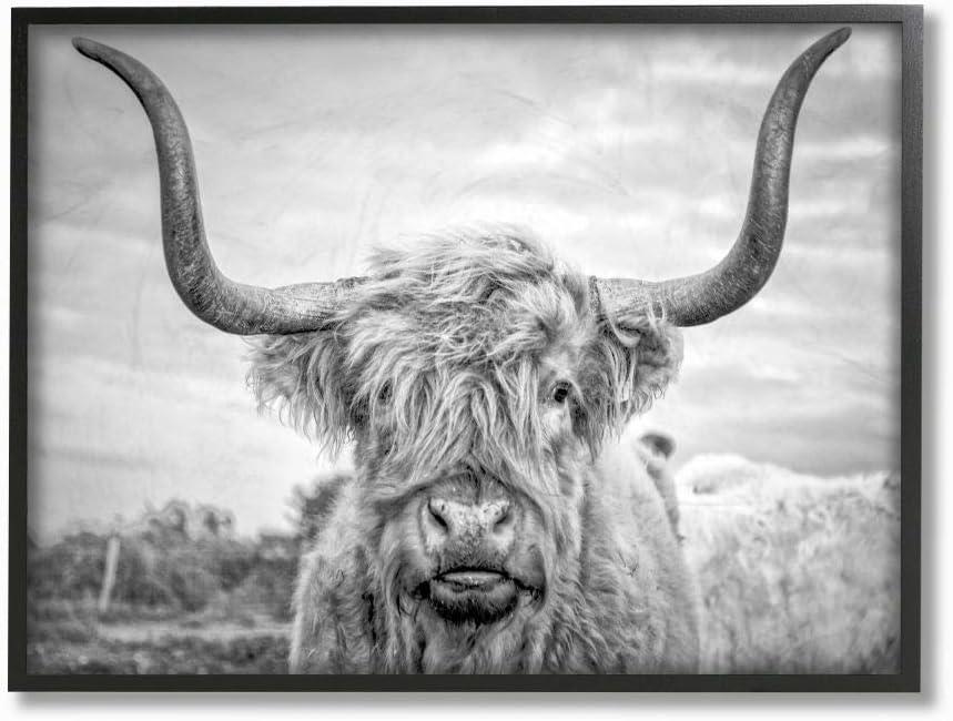 Stupell Industries White Highland Cow Photograph Black Framed Wall Art, 16 x 20, Design by Artist Joe Reynolds
