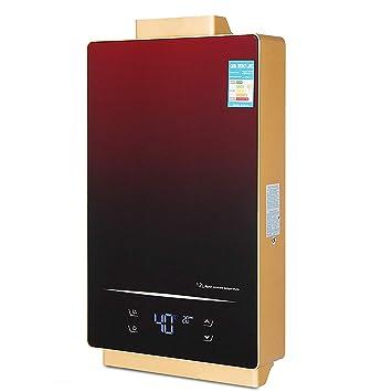 Amazon.com: Vevor Calentador de agua sin depósito, de ...