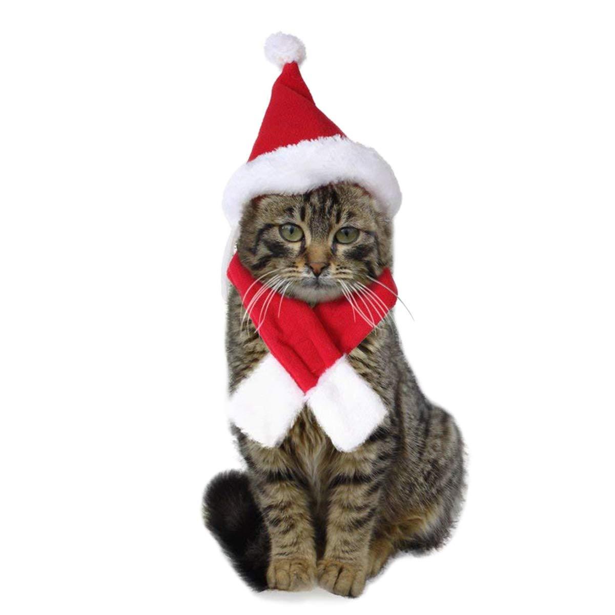 PETCUTE Weihnachten Kostüm für Katze und Welpen Santa Hut Schal für Katzen, Katze kostüm Weihnachtsmann