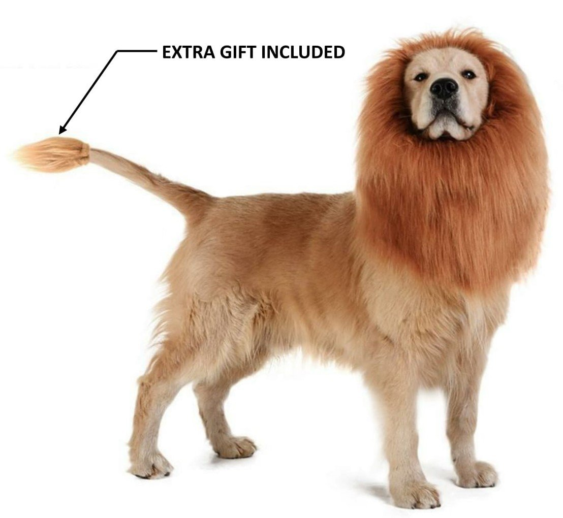 Theeb Lion Mane For Medium to Large Sized Dogs With Ears Plus FREE Lion Tail - SIMBA Lion King Mane For Dogs - Light Brown King of The Jungle Dog Wig For Your Best Friend - Dogs Party Costume by THEEB (Image #1)